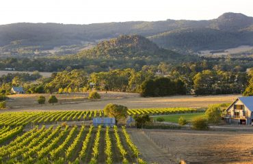 Winery - Macedon Ranges
