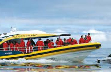 Pennicott Bruny Island